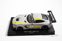 NSR Mercedes-AMG GT3 Test Car / Grau